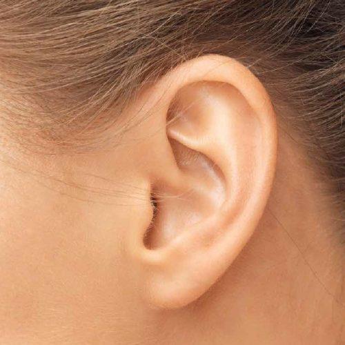 Korva, nenä ja kurkkutaudit